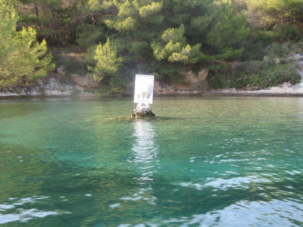 Šćedro island- Lovišće bay